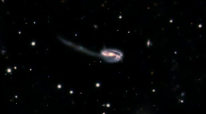 Galaxia espiral (Renacuajo) UGC 10214