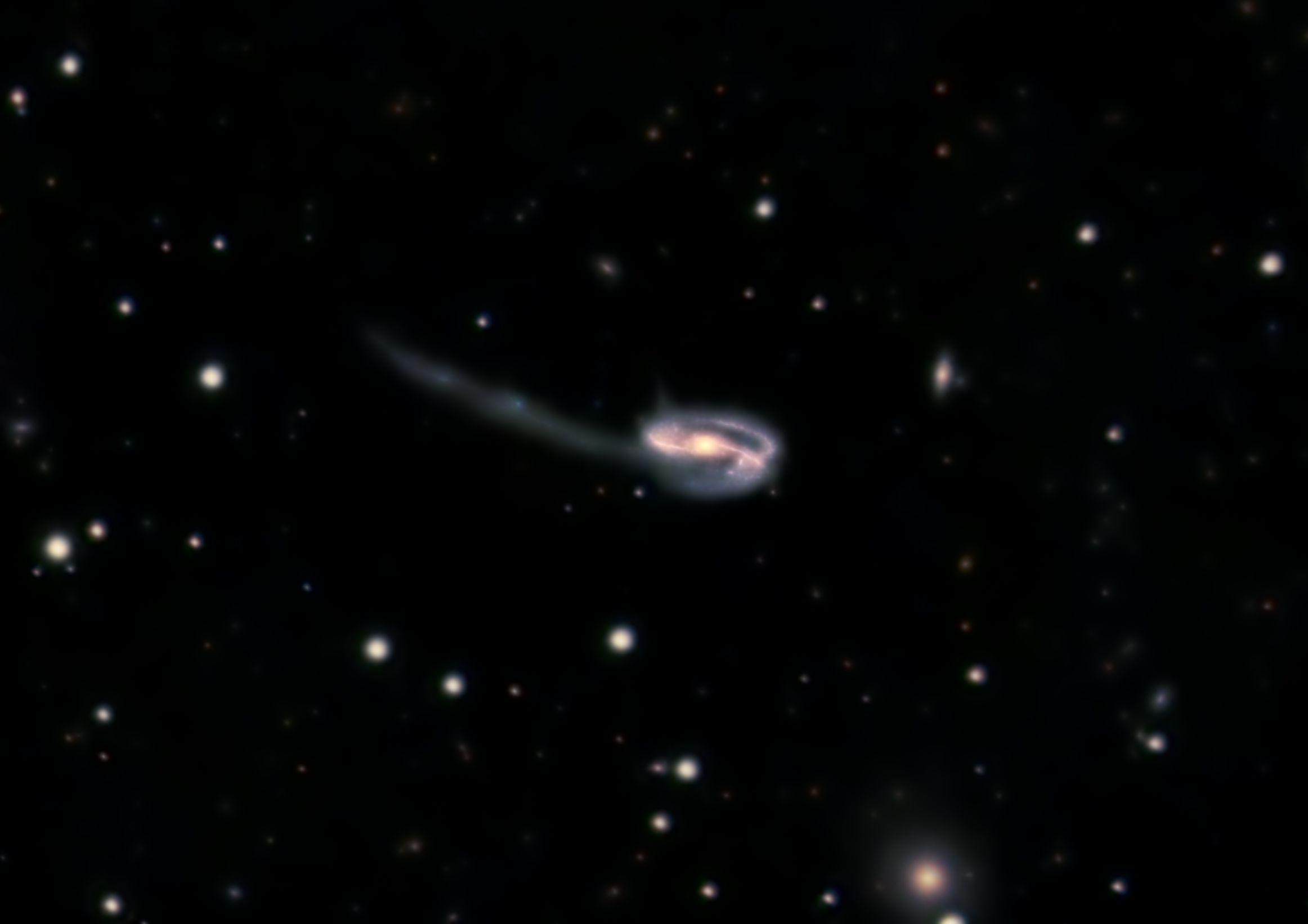 Tadpole+Galaxy