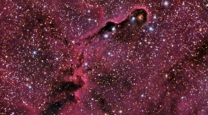 Nebulosa de la trompa del elefante IC 1396 A