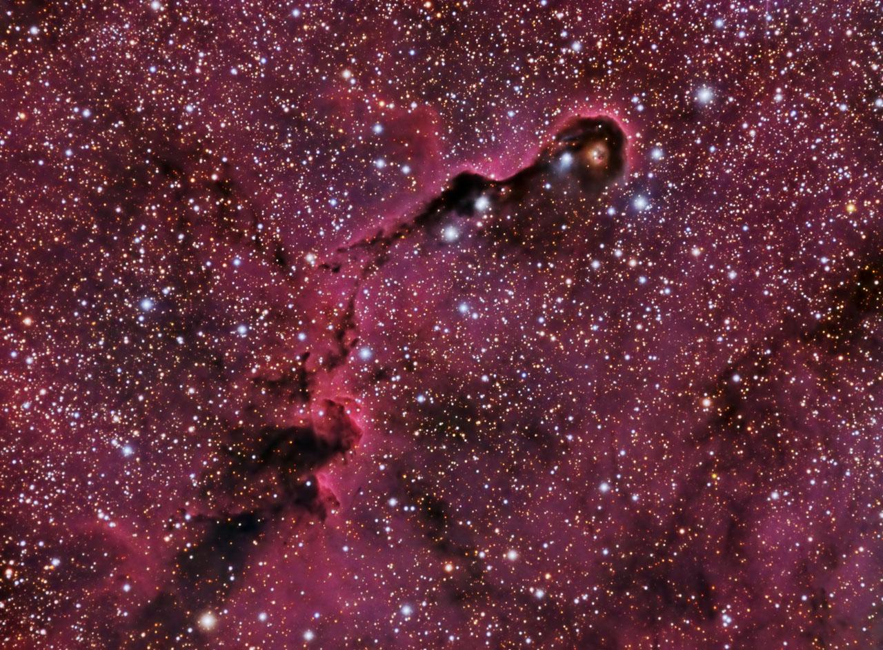 IC1396 Trompa del Elefante-Peque